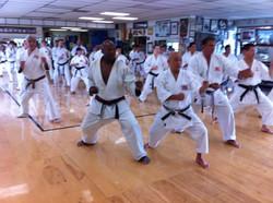 Hanshi training at Soke's Dojo 2012
