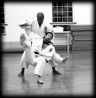 Photo of a martial arts class