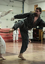 Photo of martial arts demonstration