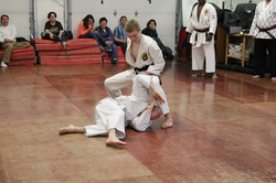 Martial Arts Alaska