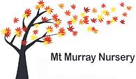 mtmurray.png