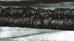 COILS I 2010  -etching- 101x60 cm