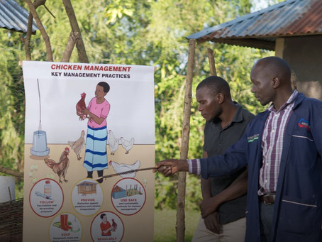 'You learn from the setbacks': Kenyan youth weather pandemic together