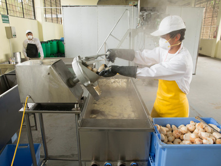 Argentina's San Juan Province to promote MSMEs recovery with IDB support