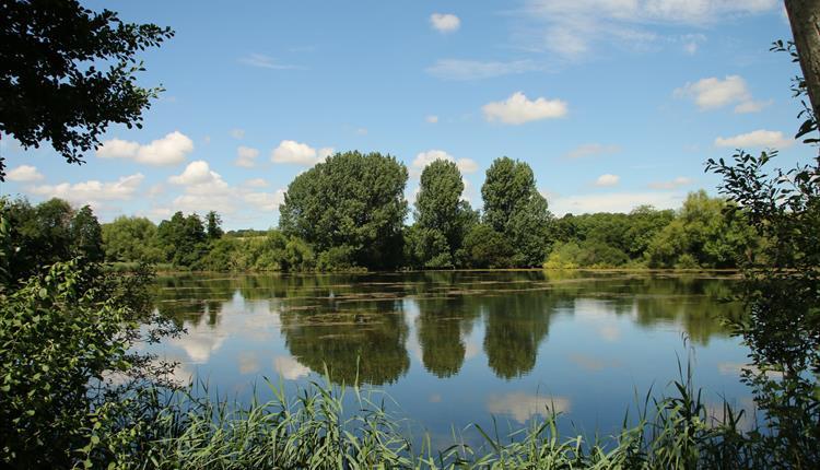 Langford Lakes Wildlife Reserve