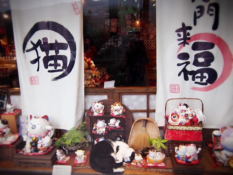 台湾にて:猫が隠れています^^