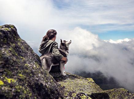 獣医ホリスティック医療・犬・Q&A