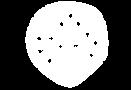 Logo%20250px_transparente_white_edited.p