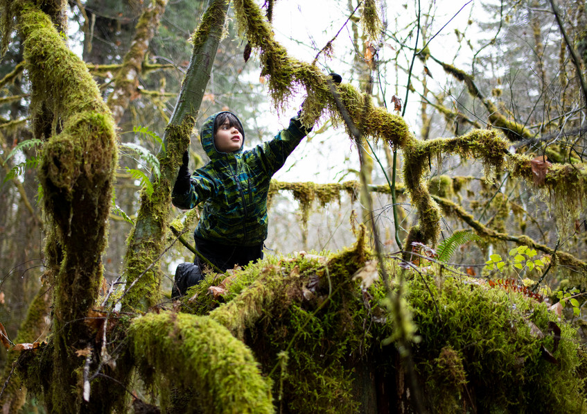 Henry Omey, 5, of Portland, Ore. loves going into the forest when it's raining. This photo is part of an on-going project about Oregon forests. 2019