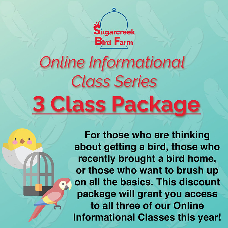 Online Informational Class Discount Package
