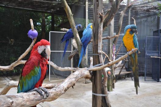 sbf bird farm info gallery 1.JPG