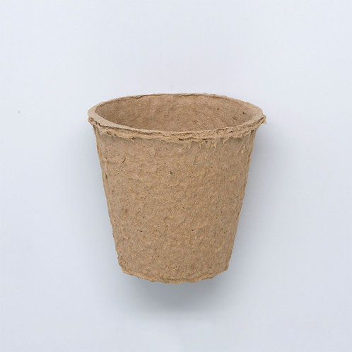 Paper Cup, Large