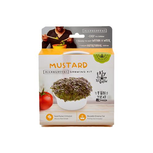 Mustard Microgreen Kit