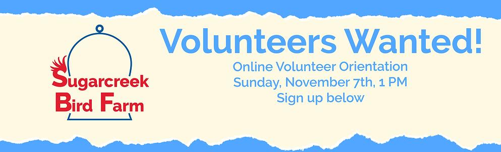 Volunteers-wanted-torn-paper-November-2021.png