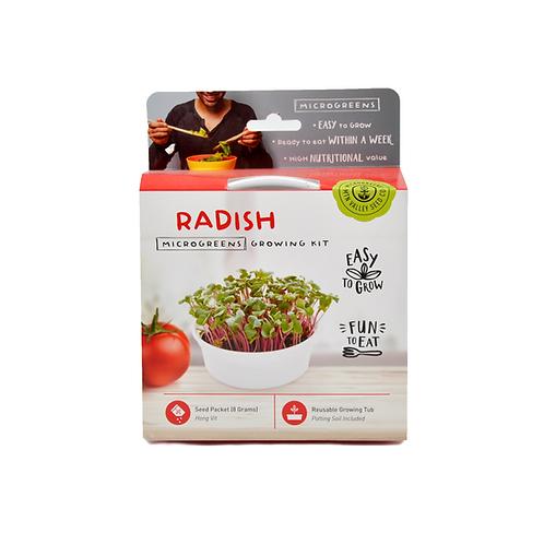 Radish Microgreen Kit