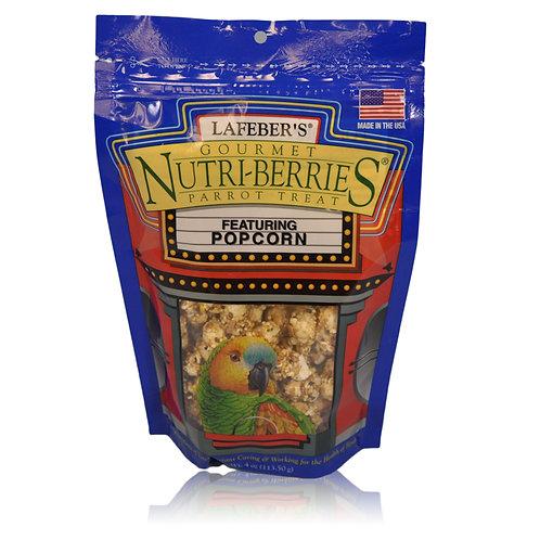 Nutri-Berries Popcorn Parrot, 4 oz
