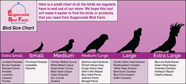 SBF-Bird-Size-Chart-Revised-3.png