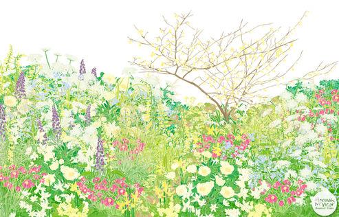 'Essence of Spring'