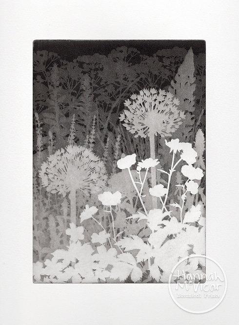 'Garden in Layers'  aquatint