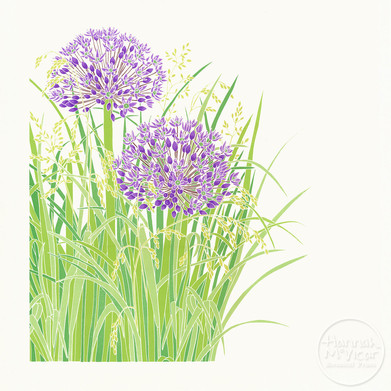 'Allium & Grasses'
