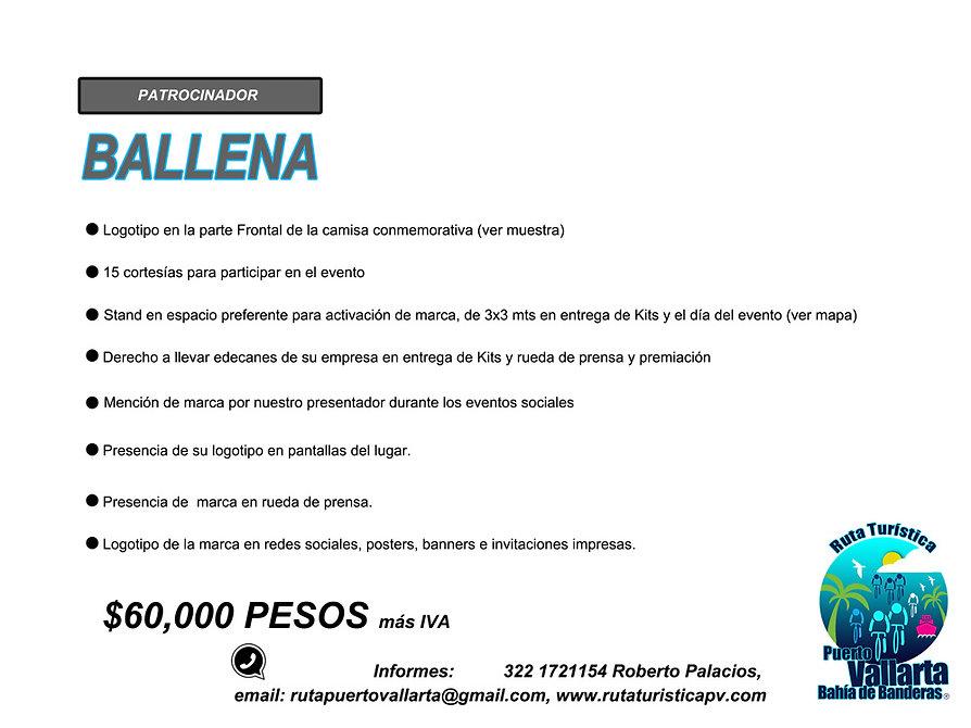 PATROCINIOS22020 copia.jpg