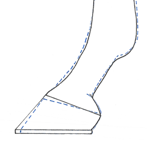 Collapsed heels, How often should I shoe my horse?, Collapsed heels, Long toes in horses, Shoe placement in horses, Hoof-pastern axis