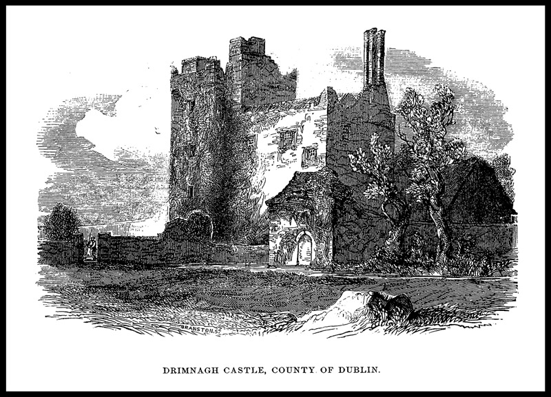 DRIMNAGH CASTLE OLD3.jpg