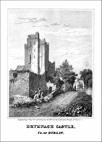 DRIMNAGH CASTLE OLD2.jpg