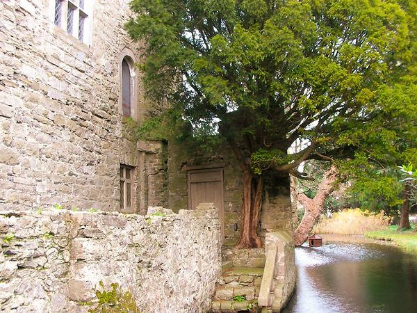 drimnagh-castle-steps.jpg