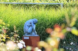 tuin van het jaar 2013