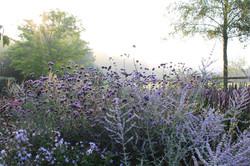 Onderhoud vaste plantenborder