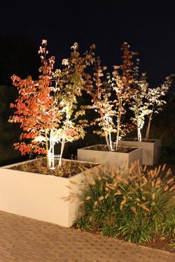 Moderne bloembakken
