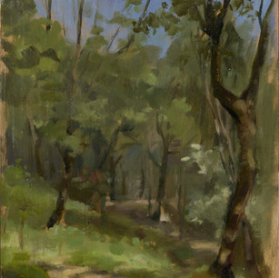 Fiesole wooded path.jpg