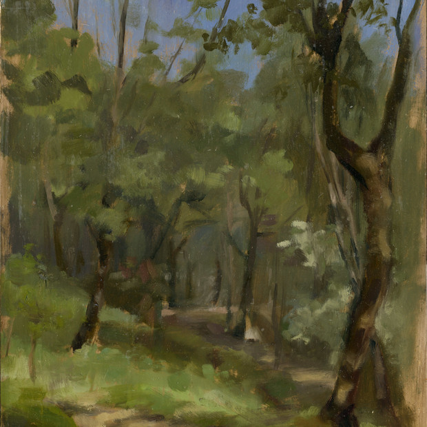 Fiesole wooded path.jpg