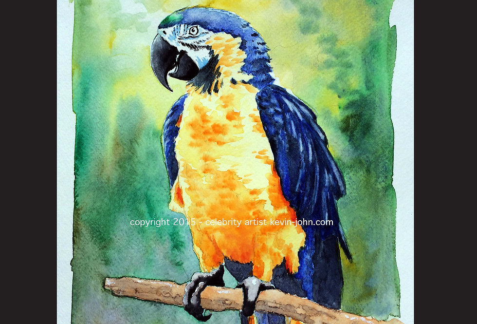 Paradise Parrot Matted Print