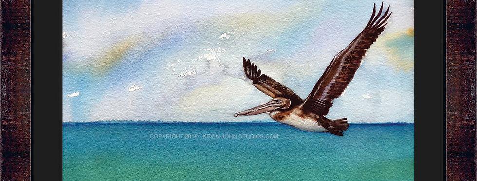 Soaring Pelican Framed Giclee