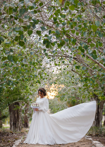 Bride under Israeli wooded arch