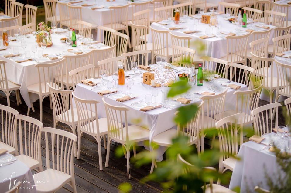 Scene of Large Outdoor Israeli Wedding