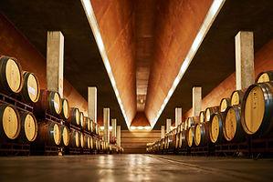 Enate (Mejores vinos de Somontano) - GastroMadrid (15).jpg