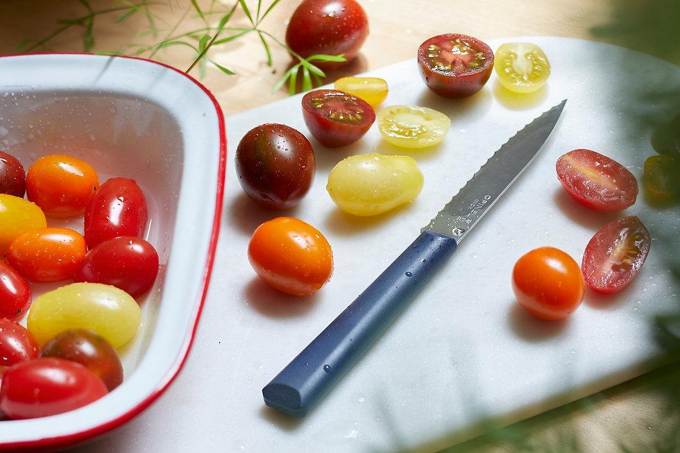 Opinel Les Essentiels (GastrHOGAR) - GastroSpain