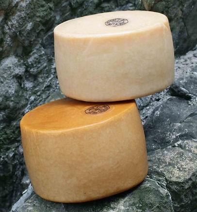 Queso Artzai Gazta (Mejores quesos España) - GastroMadrid