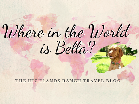 Where in the World is Bella - Part 5
