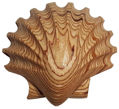 Wooden Pecten Shell