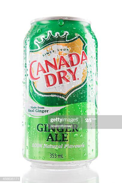 can-of-canada-dry-ginger-ale-picture-id4