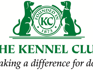 Kennel Club: Monthly KC Journal