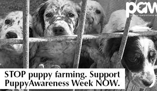 Puppy Awareness Week