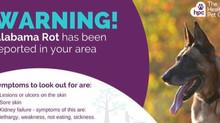 Alabama Rot Warning for Dogs walking on Cannock Chase
