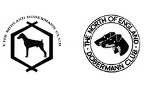 Welcome... to the South East of England Dobermann Club
