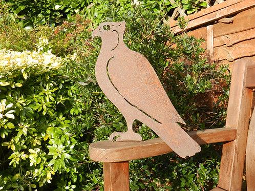 Rusty Metal Osprey / Hawk