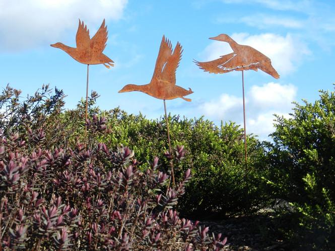 Rusty Duck Sculpture